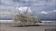 Theo Jansen's Wind Powered Kinetic Sculptures: They have no motors. They're powered only by wind, and wander around the beach unsupervised. Freaky as hell. I love it.