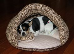 Pet Beds, Dog Bed, Perro Cocker Spaniel, Dog Playpen, Diy Dog Toys, Dog Store, Animal Decor, Dog Accessories, Pet Shop