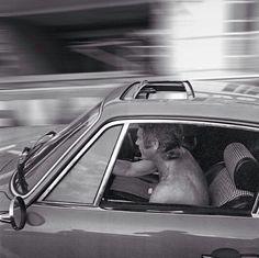 Steve McQueen en Alfa! King of Cool!