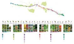 Who Buys Landscaping Rocks Landscape Diagram, Landscape And Urbanism, Landscape Concept, Landscape Plans, City Landscape, Urban Landscape, Landscape Design, Flow Chart Design, Parque Linear