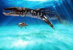 Le Liopleurodon était le plus féroce carnivore du jurassique, il mesurait de 16 à 25 mètres. Il semait la terreur dans les mers.