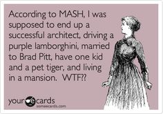 According to MASH, I was supposed to end up a successful architect, driving a purple lamborghini, married to Brad Pitt, have one kid and a pet tiger, and living in a mansion. WTF??