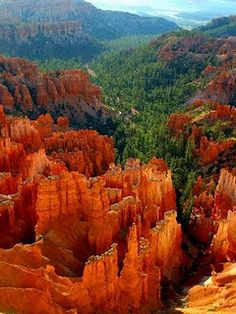 Bryce Canyon in Utah. This picture does not do it justice. Go back at night for amazing stargazing on the Canyon's rim! The park ranger's told us the area offers the clearest night skies in the continental U.S.