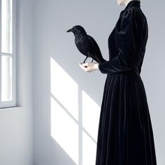 Histoires Naturelles by Juliette Bates, Photography. Silhouette and a crow.