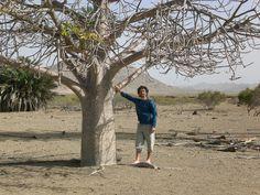 Baobab+Cristian Boavista (Capo Verde) 02/2007