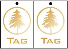 """Tags for playing The Hunger Games- Everybody has 3 tags. When you get all 3 torn off, then you """"die."""" The last person with any tags is the """"victor."""""""