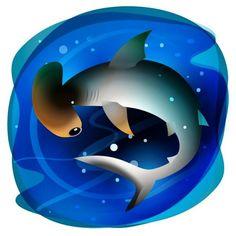Tiburón martillo - 335 / #365rounds #BICHOSmexicanos #illustrator #illustration #vector #conabio #mexico #shark