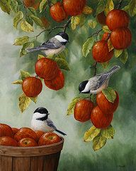 Animaux Art - Oiseau Peinture - Récolte d'Apple mésanges par Crista Forêt