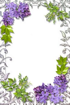 Cute White PNG Frame with Lilac