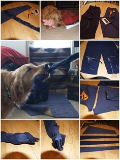 how to make Dog toy with recycled pants step by step DIY tutorial instructions, How to, how to make, step by step, picture tutorials, diy instructions, craft, do it yourself