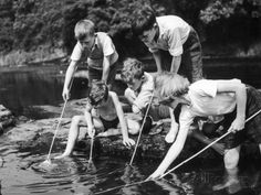 Group of Children Fishing in a Stream with Nets Fotografisk trykk hos AllPosters.no