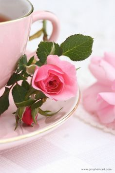 12/01/15 I'm so sorry you are not feeling well sweetie, here's a cup of tea and pretty pink rose to brighten your day <3 xo
