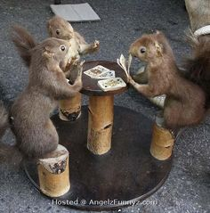 Nuts = the best possible poker hand given the cards that are exposed #pokerterms