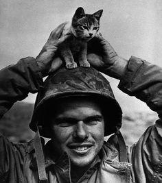 10 impressionantes fotografias tiradas durante a Batalha de Iwo Jima Batalha De Iwo Jima, Pictures Of Soldiers, Battle Of Iwo Jima, Vietnam War Photos, Cat People, World War Two, I Love Cats, Historical Photos, Wwii
