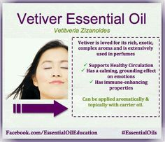 Vetiver Essential Oil Bobbi with YL Vetiver Young Living, Young Living Oils, Young Living Essential Oils, Vetiver Essential Oil, Doterra Essential Oils, Essential Ouls, Oils For Life, Yl Oils, Holistic Healing
