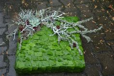 Grave Decorations, Funeral, Greenery, Succulents, Gift Wrapping, Fruit, Flowers, Design, Log Projects