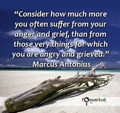 Consider how much more you often suffer from your anger and grief than from those very things for which you are angry and grieved. #Quotes #Positivity https://www.focusfied.com