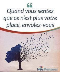 Quand vous sentez que ce n'est plus votre place, envolez-vous - Miracle Morning, Quote Citation, French Quotes, Positive Attitude, Love Words, Quelque Chose, Positive Affirmations, Grilling Gifts, Place