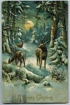the snow falls silently where the deer wait in the quiet