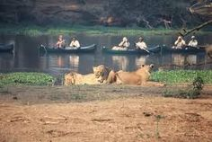 """Résultat de recherche d'images pour """"le zambèze"""""""