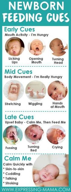 Baby Feeding Cues great to learn as a new parent. You will recognize baby is hungry before they start to cry. Responsive feeding in an important part of developing your newborn baby's health. Read more about Feeding on Demand When Breastfeeding | Expressing Mama #Pregnancyhealth