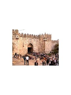 I'm reading O' Jerusalem on Scribd Book Sites, Jerusalem, Textbook, Pagan, Monument Valley, Philosophy, Rome, Religion, Education