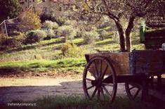 #Umbria, Giano dell' Umbria e dintorni: un #agriturismo che sa di casa www.delquondam.it