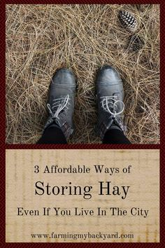 Storing hay bales in the city takes some creativity but small space hay storage is possible for urban farmers. Here are 3 ways to keep it clean.