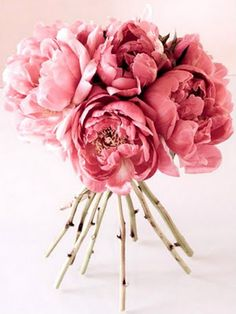 A wedding bouquet can be a big decision when it comes to planning a wedding. Find out which flowers are in season this summer for a beautiful bouquet! Fresh Flowers, Pink Flowers, Beautiful Flowers, Pink Roses, Colorful Roses, Hello Beautiful, Tea Roses, Exotic Flowers, Yellow Roses