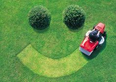 A beautiful lawn puts a smile on your face.  Sunrise makes your lawn beautiful.