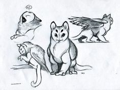 baby griffins mythical creatures drawing - Google Search