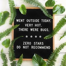 Went outside today. Very hot. There were bugs. Pic by: FUL CANDLES letterboard ideas, , funny summer quotes Sassy Quotes, Me Quotes, Funny Quotes, Funny Summer Quotes, Quotes About Summer, Quirky Quotes, Word Board, Quote Board, Message Board