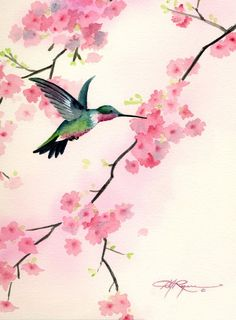 """Hummingbird Discover Hummingbird Art Print - """"Cherry Blossoms"""" - Watercolor Painting - Signed by Artist DJ Rogers - Wildlife - Wall Decor Cherry Blossom Watercolor, Watercolor Hummingbird, Cherry Blossom Art, Hummingbird Tattoo, Watercolor Bird, Watercolor Paintings, Original Paintings, Tattoo Bird, Tattoo Watercolor"""
