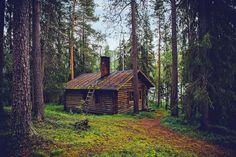 cabaña, bosque, casa, rural, madera, campo, árboles, 1702121811
