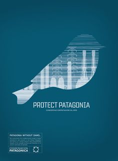 Protect Patagonia - Morgan Sterns