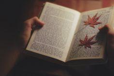 Souvenir entre pages