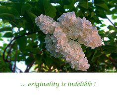 ... #originality is indelible !