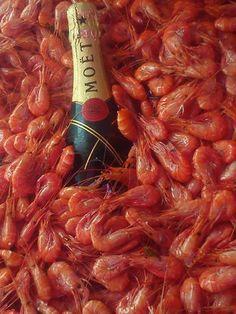 camarão e champanhe