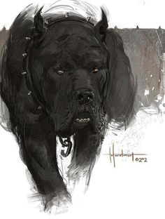 Cane corso artwork ilustration