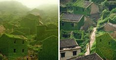 Abandoned Chinese Fishing Village Being Swallowed By Nature | Bored Panda