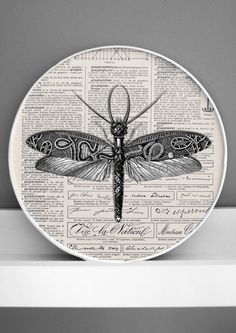 Paper collaged insect mounted on antique dictionary page, in wooden frame.