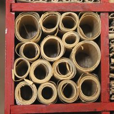 DIY mason bee house made with paper tubes - create your own nest for these important bees and help pollinate your garden at the same time.