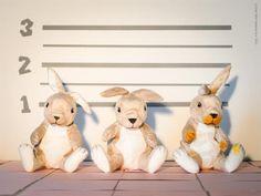 Marmeladmysteriet | Redaktionen | inspiration från IKEA