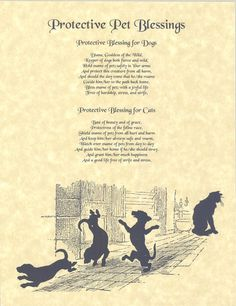 Protective blessing for cats and dogs