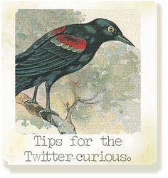 There'll be paper, stripes + plenty of tales. Twitter Tips, Big Bird, Art Journal Inspiration, About Me Blog, Social Media, Paper, Notes, Animals, Marketing Ideas