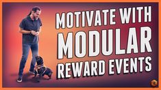 Motivate a dog (even skittish) - Modular Reward Events! Puppy Training Tips, Dog Training Videos, Ian Stone, Learning Centers, Knowledge, Events, Teaching, Cat, Motivation