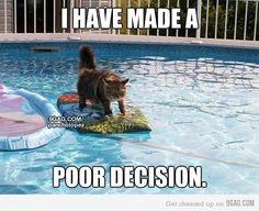 ha! made me smile :)