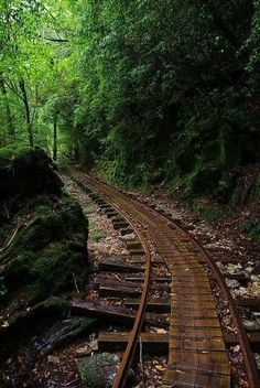 An abandoned forest railway on Yakushima Island, Kagoshima, Japan. Yakushima, Abandoned Train, Abandoned Places, Simplon Orient Express, Bg Design, Old Trains, Japan Photo, All Nature, Train Tracks