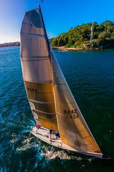 Sailing in Sydney Harbor