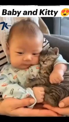 Funny Cute Cats, Cute Baby Cats, Cute Funny Babies, Cute Little Animals, Baby Dogs, Cute Funny Animals, Kittens Cutest, Baby Kitty, Baby Animals Pictures